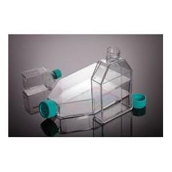 فلاسک فیلتردار کشت سلول استریل TC Flask 175cm2